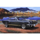 Model Set Shelby Mustang GT - 1/24